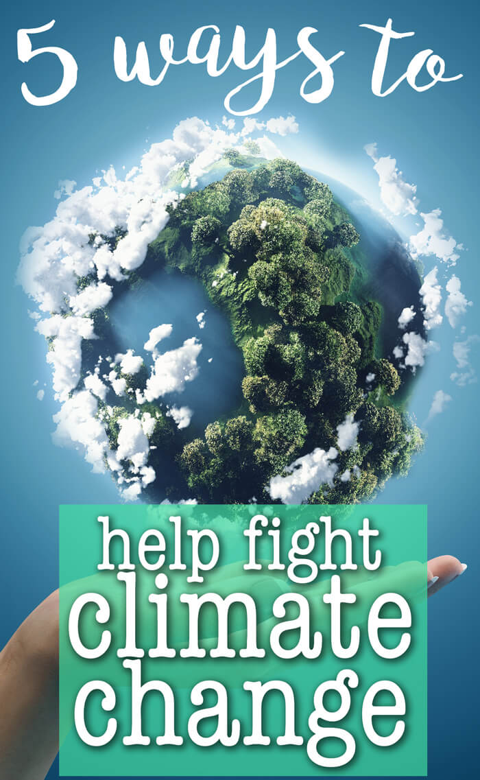 5 Ways to Help Fight Climate Change - even though our current government isn't. Green Living | Eco-Friendly Tips