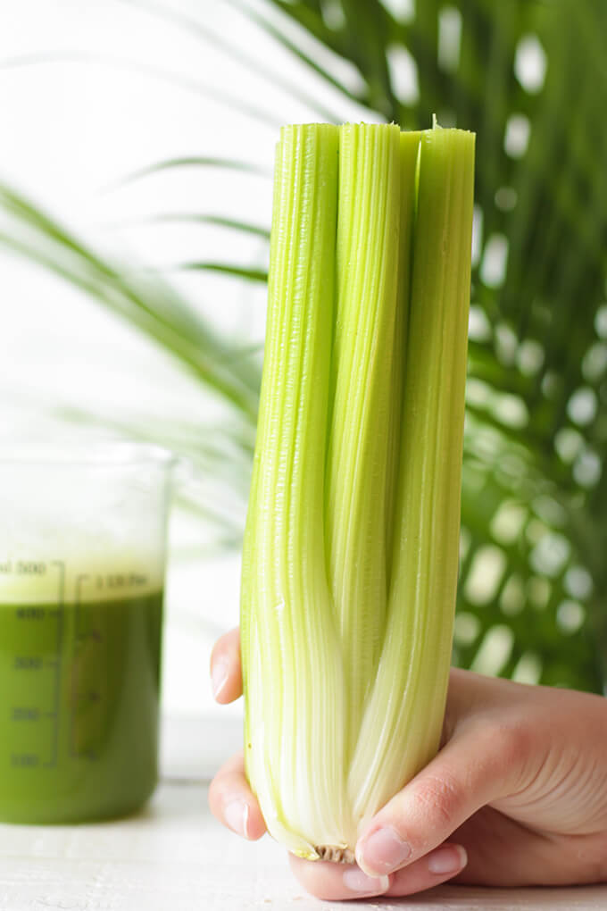 Health Benefits of Celery Juice & Recipes for both a blender and a juicer