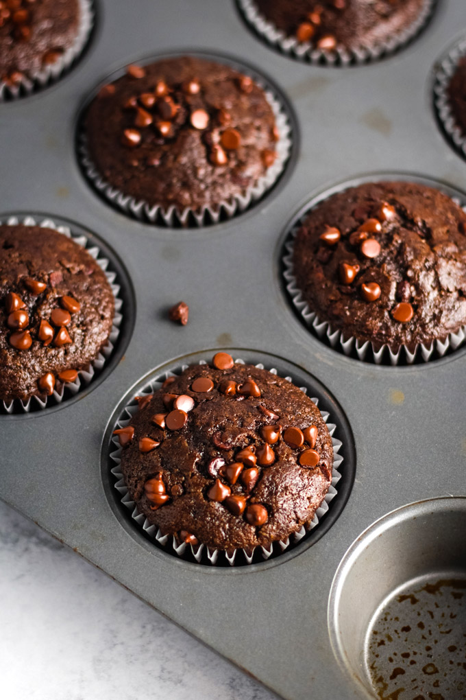 Vegan chocolate muffins with chocolate chips on top fresh out of the oven in a muffin tin.